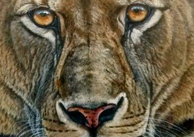 ADaughteroftheSun-Lioness-761x1024